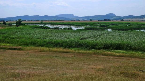 Balaton-felvidék, Káli-medence, Kornyi-tó.