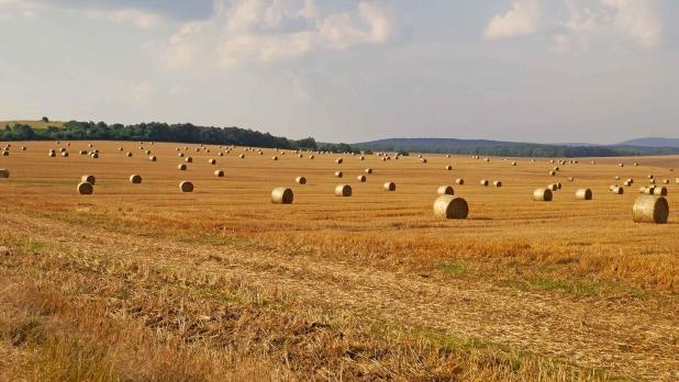 Balaton-felvidék, Veszprémi-fennsík.