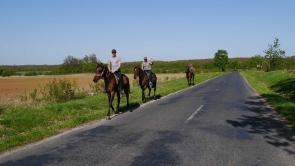 Balaton-felvidék, lovasok Barnagon